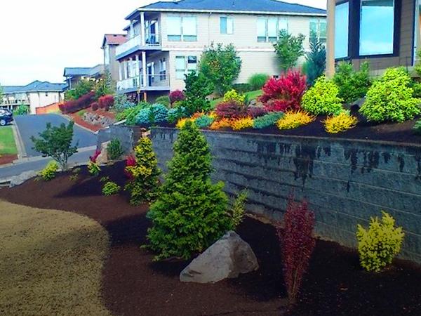 Cascade Landscape & Design Inc   Vancouver WA Landscapers